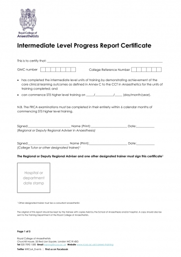 Intermediate Level Progress Report