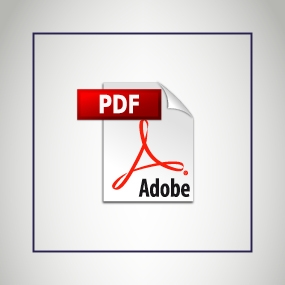 Icon for a PDF file